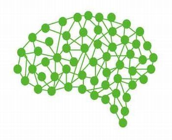 脳.1.jpg